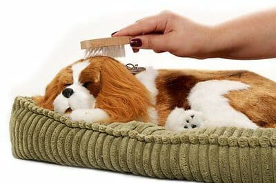 Adorable Snorables The Perfect Pet